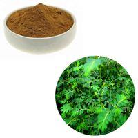 chanca piedra / Phyllanthus Niruri, thumbnail image