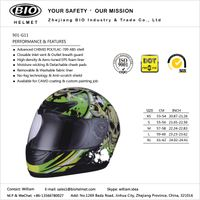 motorcycle helmets DOT/ECE certificated