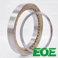 10789-RAD EOE Mud pump bearings