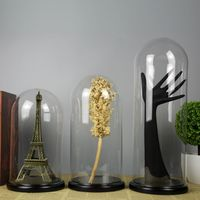 Display Glass Dome With Wood Base D15xH26cm D15xH30cm D15xH40cm