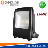 IP65 Quality 100W Outdoor LED Floodlight for Park with Ce (Flood Lighting 110-100W)