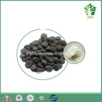 Organic 99% 5-Htp Griffonia Simplicifolia Seed Extract Weight Loss