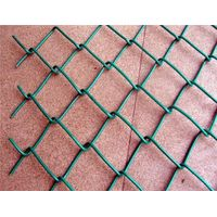 Eco Friendly Galvanized PVC Coated Wire Mesh Chain Link Fence