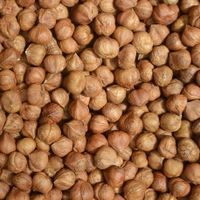 best quality grade hazelnuts whole sale price