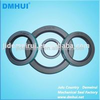 Truck/Trailer CR Oil Seal in NBR