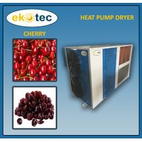 Energy Saving 75% Industrial Fruits Dehydrator thumbnail image
