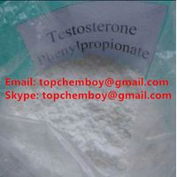 Hot Sale Testosterone Phyenylpropionate Steroid /test p