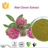 free sample high quality 100% natural HPLC 2.5%  8% 20% 40% biochanins  red clover extract