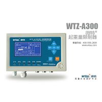 overload limiter for crane WTZ-A300