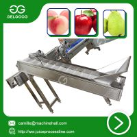Automatic weighing classifier automatic vegetable classifying machine thumbnail image