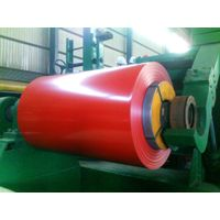 PPGI(color steel coil)