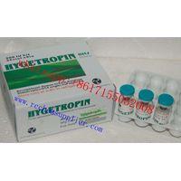 HGH Frag 176-191 2mg / vial 5mg / vial WHATSAPP:+8617155052008 thumbnail image