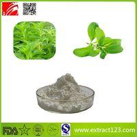 High Quality Stevia Extract thumbnail image