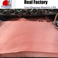 engineered red birch wood veneer factory supply plywood face veneer