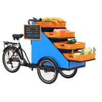 street vending trike cart retail bike for flowers vegetables fruits