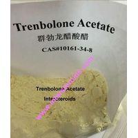 Trenbolone Acetate ,Trenbolone Acetatetestosterone