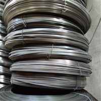 High Precision Flat Steel Wire /Galvanized Flat Wire thumbnail image