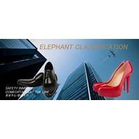 Selling ELEPHANT CLASSIFICATION shoes adam dress shoes