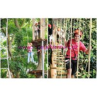 treetop adventure course