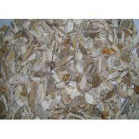 Supply of Crushed Bone from Dhaka, Bangladesh (For Gelatin Manufacturing factory) thumbnail image