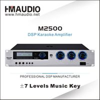 M2500 Factory Provided High level DSP karaoke amplifier 500W