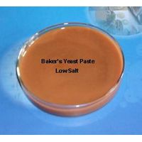 Natural Food Ingredient - Yeast Extract