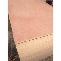 The container plywood sheet hardwood core