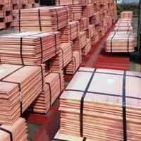 Copper Cathodes, Copper Rod, Copper Wire, Copper Coils, Copper Scraps, Copper Ingots.