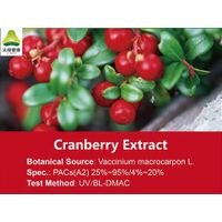 Cranberry Extract PACs15% BL-DMAC