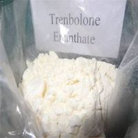 Trenbolone enanthate for Steroid hormone