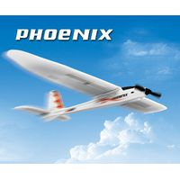 EPO Foam RC Model Plane Glider Phoenix Kits for Sale