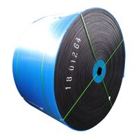 Heat Resistant Steel Cord Conveyor Belt