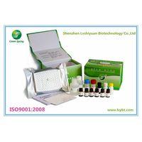 LSY-30005 Porcine Pseudorabies Virus gE Antibody Distinguishing Test Kit thumbnail image