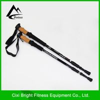 Nordic walking stick for hiking