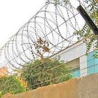 Razor Wire / Concertina Coil for Guard Fence From Manufacturer