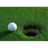 PP1531 Artificial Grass in Golf Putting Green supplier thumbnail image