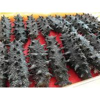 Dried Sea Cucumber ( Prickly Black Fish)