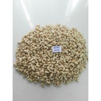 Cashew nut from Vietnam Cashew kernel thumbnail image