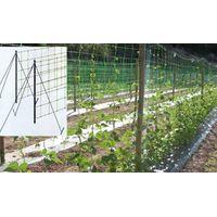 garden trellis net