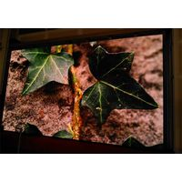Shenzhen Auroled Indoor Full Color Small Pitch Mobile Smart LED Screen Display