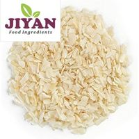Dehydrated Onion Minced 1mm to 3mm Manufacturer Exporter India