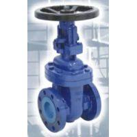 cast iron gate valve rising stem BS 4504 PN10