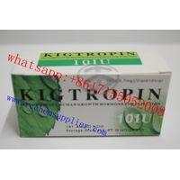Body building 99.5 % Kigtropin growth Hormone WHATSAPP:+8617155052008 thumbnail image