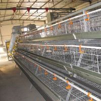 A type poultry cage equipment for broiler thumbnail image