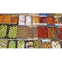 Fruit wholesale