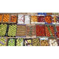 Fruit wholesale thumbnail image