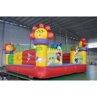 inflatable jumping,Custom brand bouncer/castle