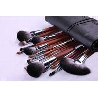 22-piece Professional Cosmetic/Makeup Brush Set, Hair:ZGF goat,sable,raccoon,nylon hair, Wood Handle thumbnail image