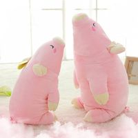 Pig soft toy pig doll pig pillow as birthday gift DS-PG001