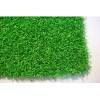 Golf Nylon artificial grass thumbnail image